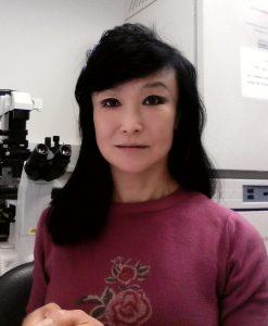 Xiuchun Tian (Cindy), Ph.D.