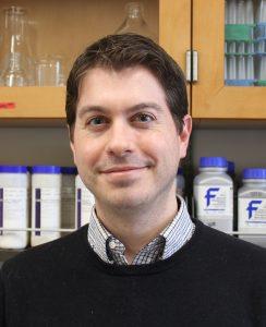 Dennis D'Amico, Ph.D.